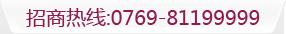 电话:0769-81199999